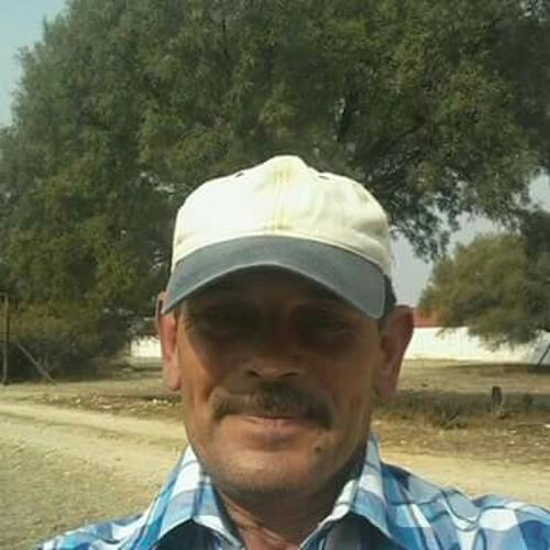 Gerhard Ehlers's avatar