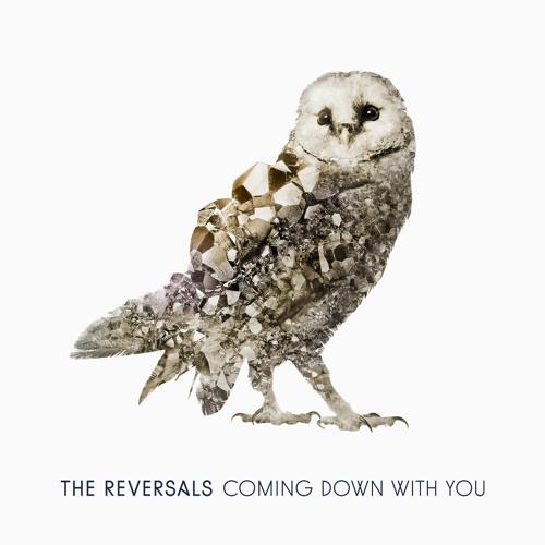 The Reversals's avatar