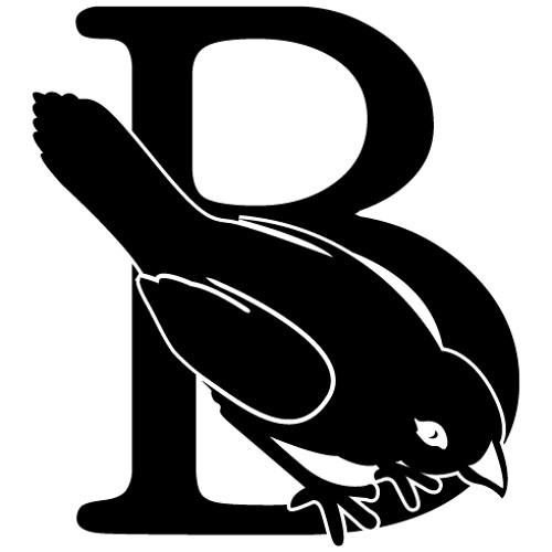 Beaks's avatar