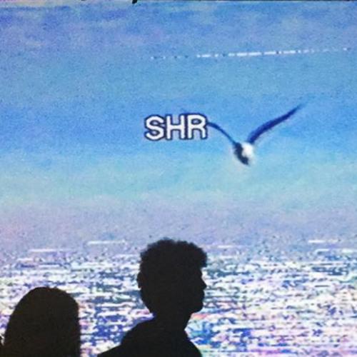 shr's avatar