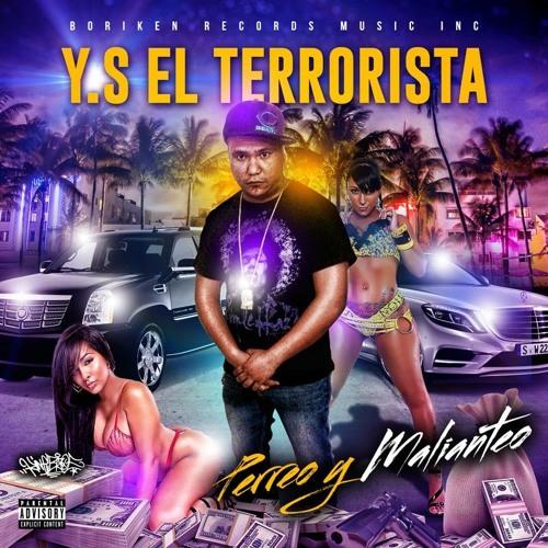 Y.S. El Terrorista's avatar