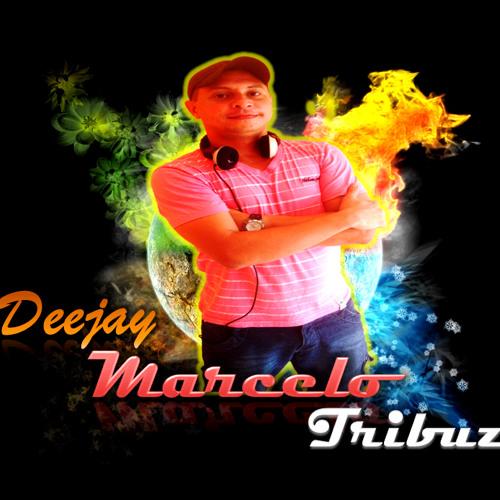 Dj Marcelo Tribuzi's avatar