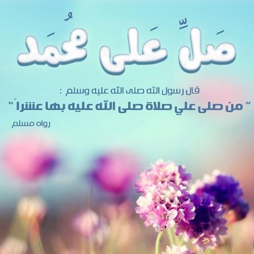 محمود حسن's avatar