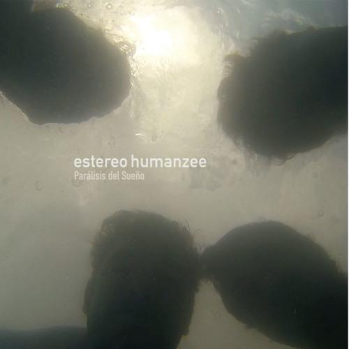 estereohumanzee's avatar