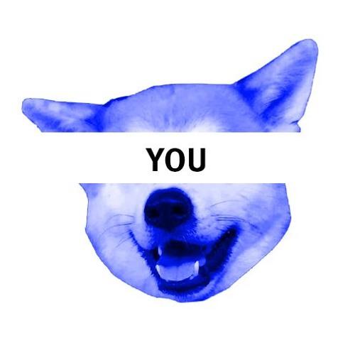 AdVolKit's avatar