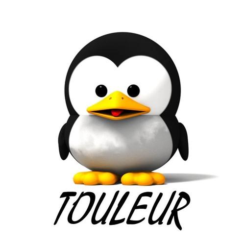 Touleur's avatar