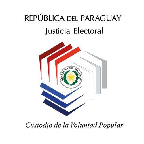 Justicia Electoral's avatar