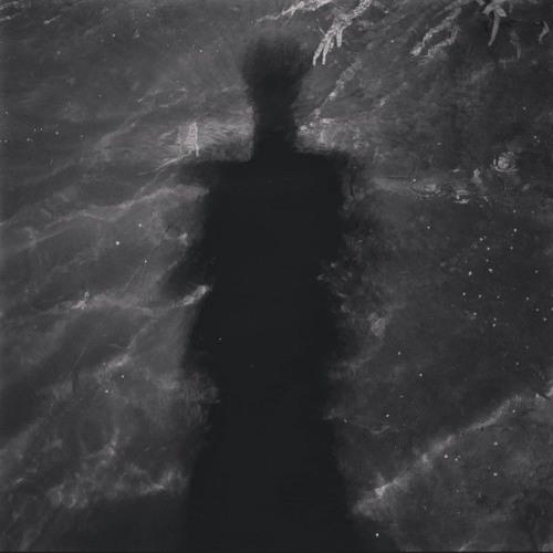 Savaitė Tylos's avatar