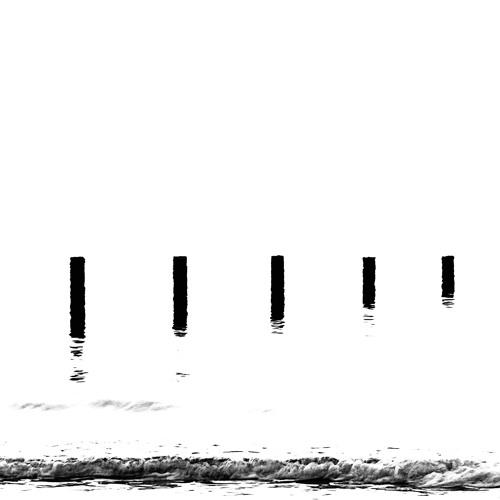 Tidal Progressions's avatar