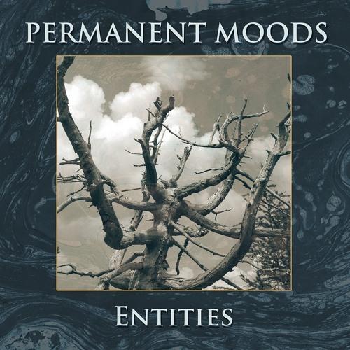 Permanent Moods's avatar