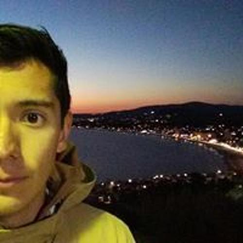 Alfonso Salmón's avatar