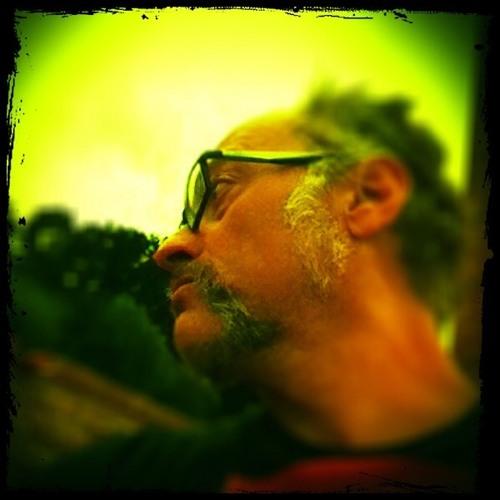 Edu Contreras's avatar