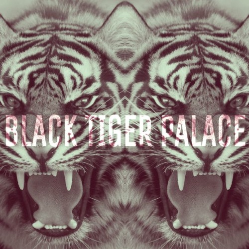 Black Tiger Palace's avatar