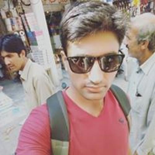 Malik HAmza Awan's avatar