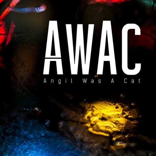 AWAC's avatar
