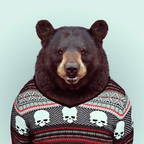 bear sweater's avatar