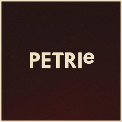 PETRIeMusic's avatar
