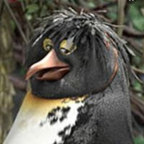 Zeke Simon's avatar