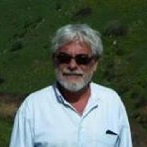 Arnon Asherov's avatar