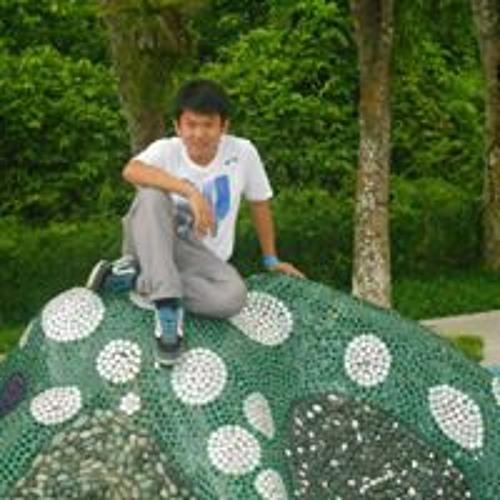Alvin Thian's avatar