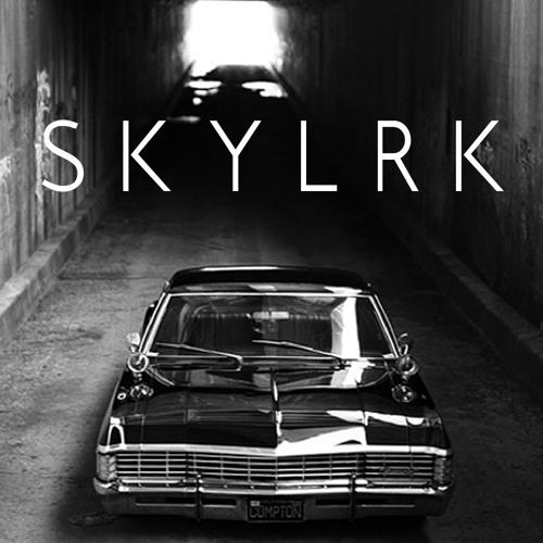 SKYLRK's avatar