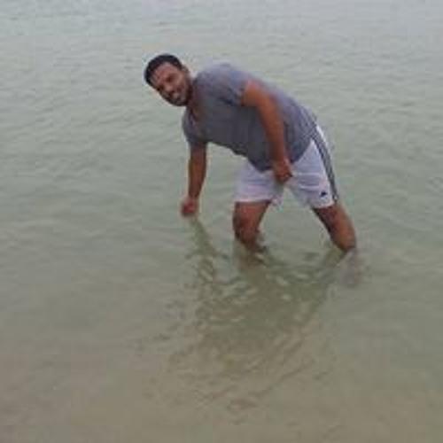 Eng Mohamed Shahat's avatar