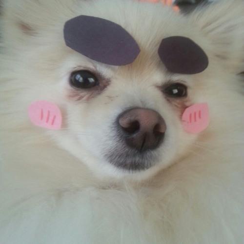 yebruh's avatar