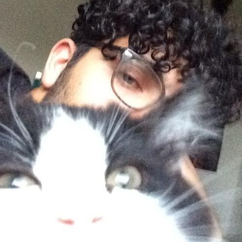 Kabir R's avatar