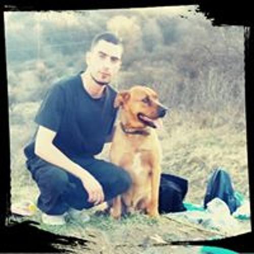 Levi Rigo's avatar