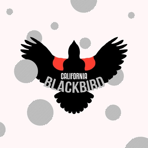 California Blackbird's avatar
