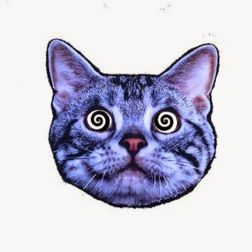 ℕimmins.'s avatar