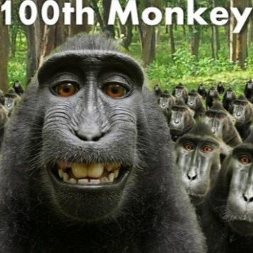 The 100th Monkey's stream