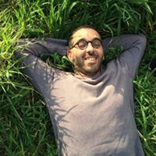 Yosi Lavy's avatar