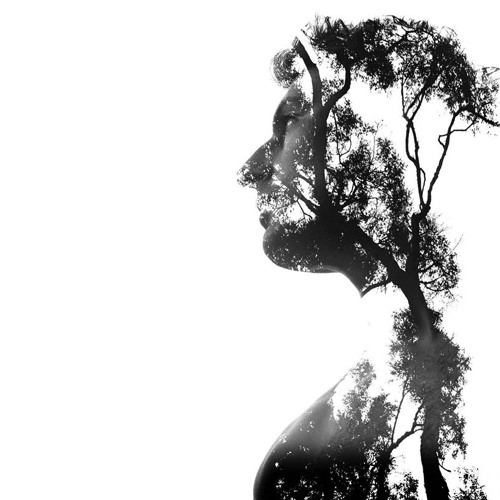 Jordan Gosling's avatar