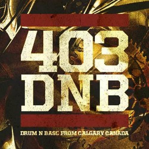 403DNB's avatar
