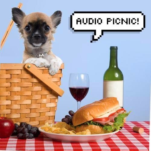 Audio Picnic's avatar
