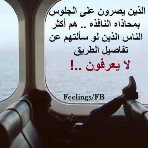 Mariam Adel's avatar