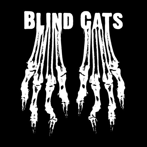 Blind Cats's avatar