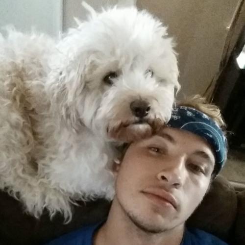 Seth Dammann's avatar