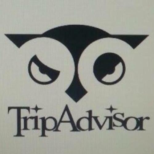 Trip Advisor's avatar