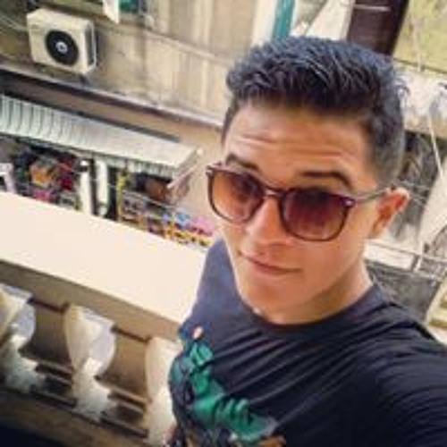 Mahmoud Farghly's avatar