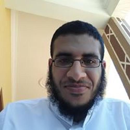 Ahmed Aboukhashaba's avatar