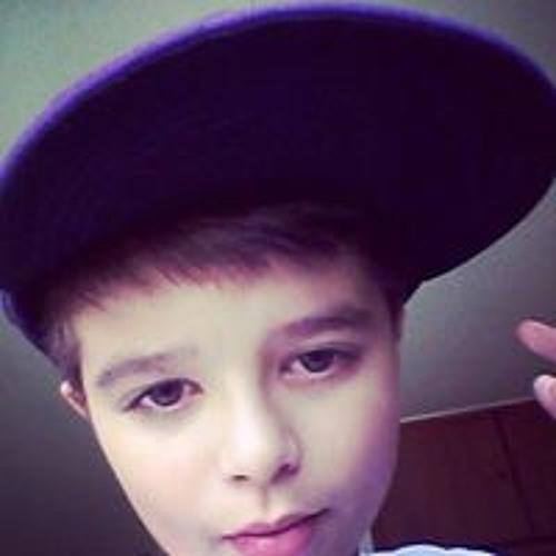 Gabriel Vicentini's avatar