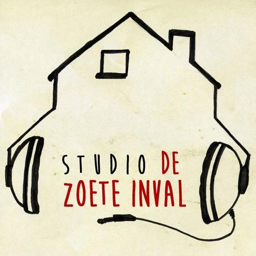 Studio de Zoete Inval's avatar