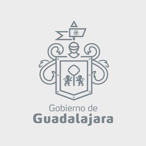 Gobierno de Guadalajara's avatar