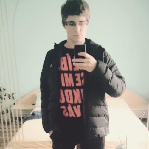 Tomáš#Vedrys's avatar