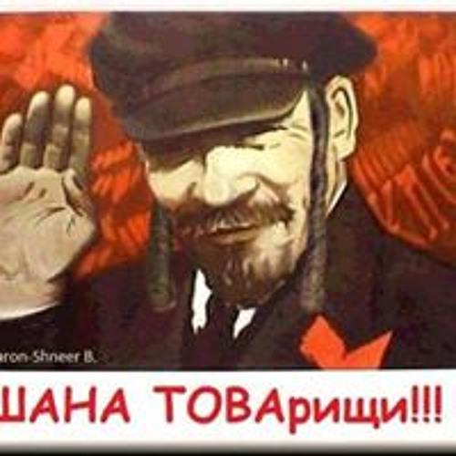 Sergey Levin's avatar