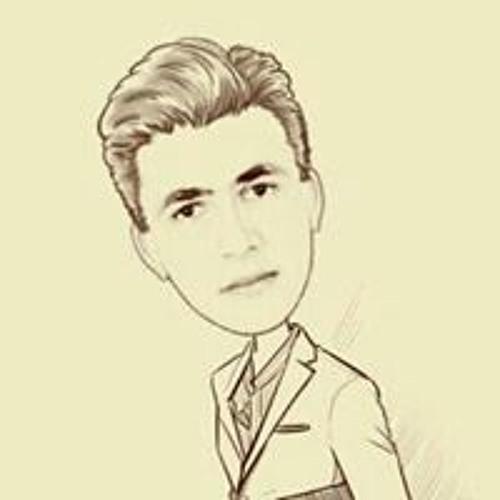 Re Eng Ahmed Elbasuny's avatar