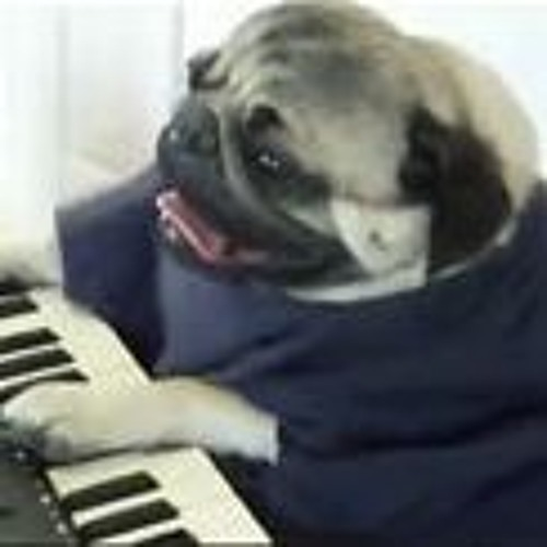 Pug With a Twist's avatar
