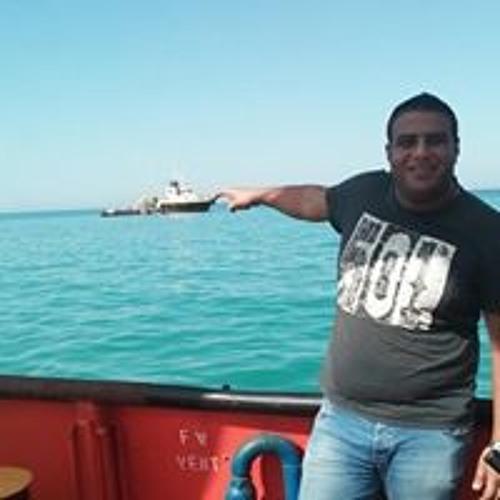 Mohamed Abo Zeana's avatar